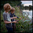 Two boys popping Himalayan balsam